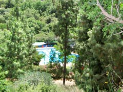 Ein Dorf in Israel lebt streng Vegan!! Swimming_pool_1